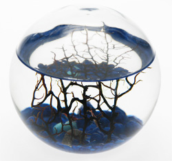 ecosphere silent yell. Black Bedroom Furniture Sets. Home Design Ideas